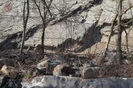 Provizorní vyvěšení ocelových dvojzákrutových pletiv Maccaferri na stromy určené k likvidaci, jedna z ochranných linií komunikace při očistě a poduškování.